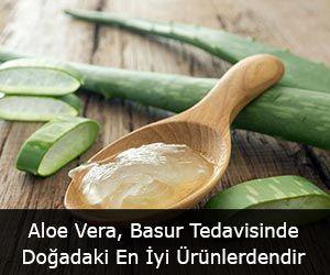 Aloe Vera, Basur Tedavisinde Doğada Bulunan En İyi Ürünlerdir